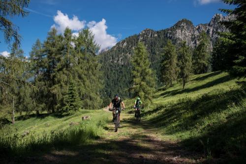 Veneto Trail 2019